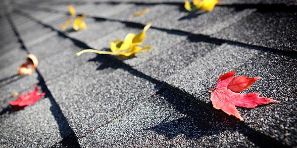 asphalt shingle repair