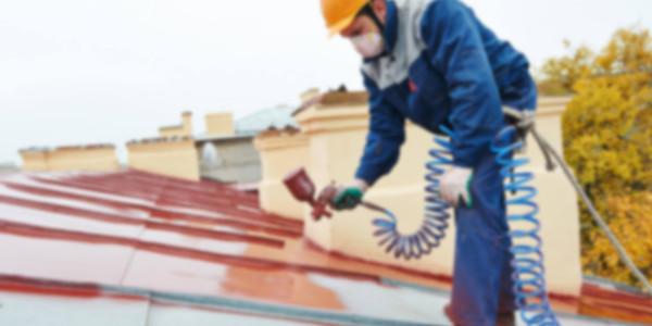 builder roofer painter